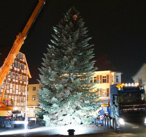 Weihnachtsbaum-Befestigung